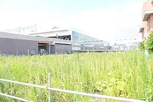 駅北口02